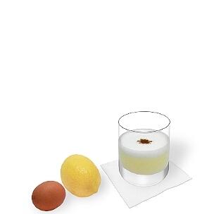 Tumbler oder Weingläser sind am besten für Pisco Sour geeignet.