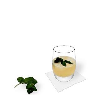 Tumbler Gläser eignen sich am besten für Whiskey Sour.