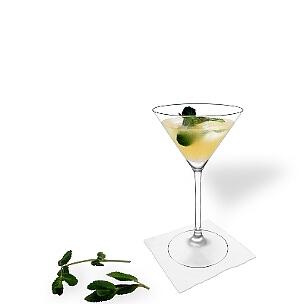 Martini Gläser sind eine weitere gute Möglichkeit für Whisky Sour.